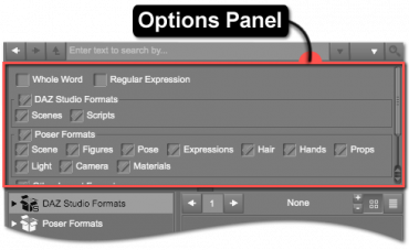 Options Panel