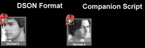 Companion Files